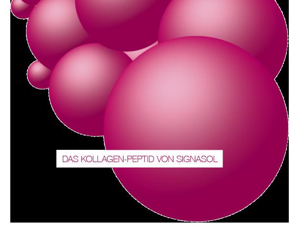 SIGNASOL Peptid